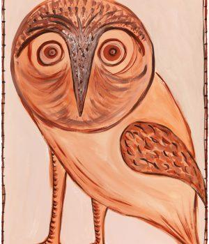 Darn Barn Owl